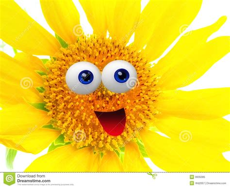 Cheerful Sun Flower Character Royalty Free Stock Photo   Image: 9935085