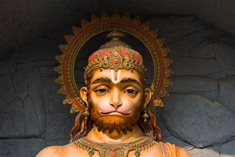 imagenes mitologicas sagradas y magicas estos son animales sagrados en diferentes culturas el