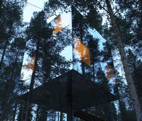 tree hotel sweden suspended swedish tree hotel reflects natural environment