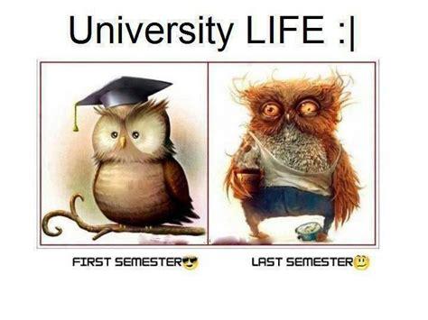 Funny Life Memes - funny memes about university life random pinterest