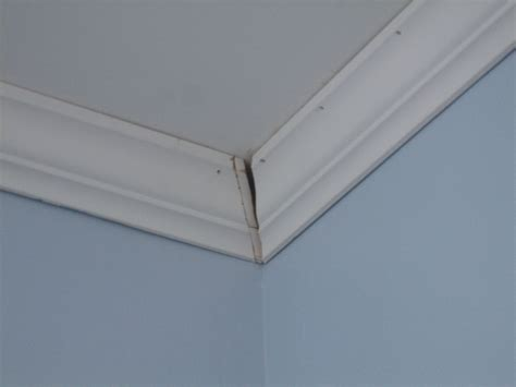 crown molding separating from ceiling 301 moved permanently