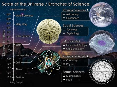biography science definition branches of science wikipedia