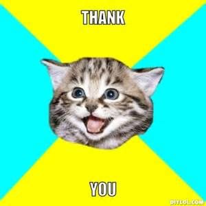 Happy Cat Meme - the best way to create fans say thank you 60 second