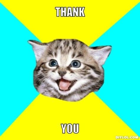 Thank You Cat Meme - the best way to create fans say thank you 60 second