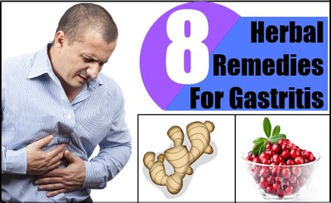 8 herbal remedies for gastritis herbal treatment for