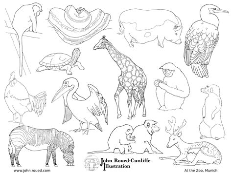 coloring pages san diego zoo empty zoo coloring pages coloring pages