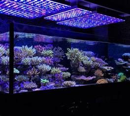 led aquarium beleuchtung aquarium led lighting photos reef and planted aquarium