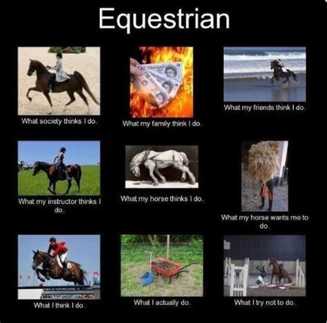 Horse Riding Meme - image gallery equestrian memes