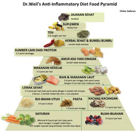 diet sehat mudah  bebas  penyakit drweils anti