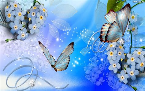 butterflies  flowers background  wallpaperscom