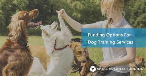 puppy financing smallbusinessfunding trainer financing