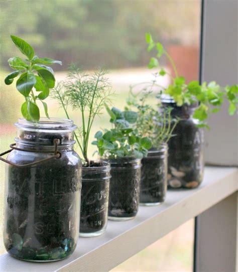 creative  easy diy indoor herb garden ideas
