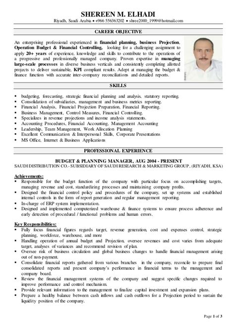 sle cv for financial controller financial controller cv
