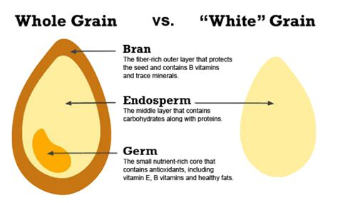whole grains you can eat eat whole grains not fool grains tastymakes