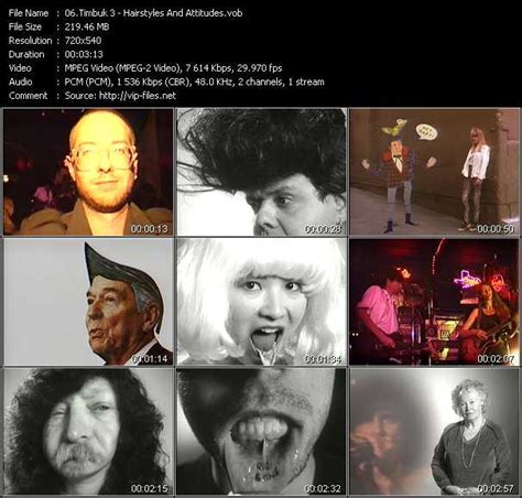 timbuk 3 hairstyles and attitudes download timbuk 3 hairstyles and attitudes vob video