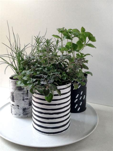 jardin de fines herbes  images indoor herb garden