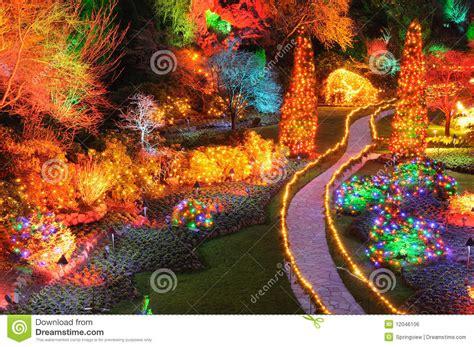 christmas lights in butchart gardens stock photo image