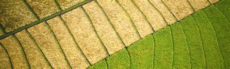 Garten Landschaftsbau Erfurt by Garten Und Landschaftsbau Erfurt Jamgo Co