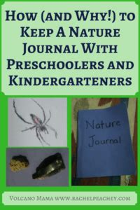 libro keeping a nature journal how and why to keep a nature journal with preschoolers and kindergarteners volcano mama