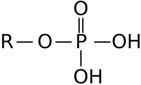 Pronunciation by Phosphate Wiktionary