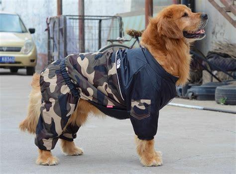 canapé pour grand chien manteau pour chien combinaison de ski camouflage kaki