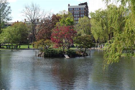 boston parks boston ma boston common park by rebelakm63 on deviantart