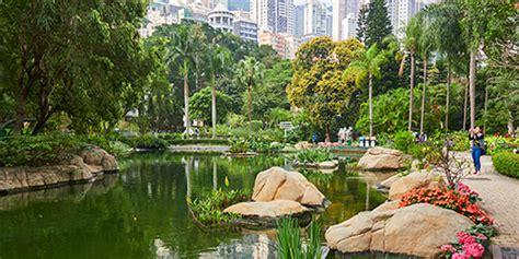 nature   city explore hong kong park hong kong