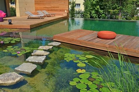natural backyard pools your own private paradise natural swimming pools by biotop
