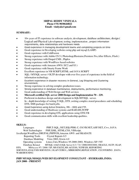 professional web developer resume template vntask