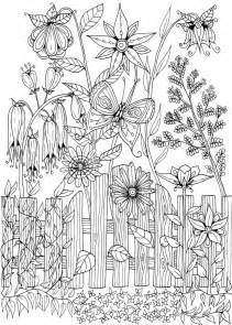 frenzy coloring book for all books 5364 best coloring pages drawings images on