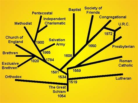 Lovely Charismatic Church Beliefs #4: Denominations_as_branches.jpg