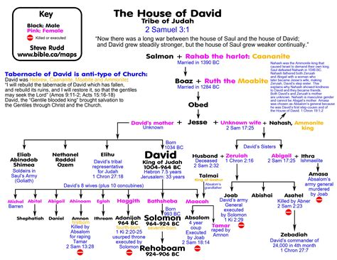 genealogical record of the descendants of david a of wales born 1639 and one of the settlers of middletown connecticut 1652 classic reprint books genealogy house of david salmon rahab boaz ruth obed