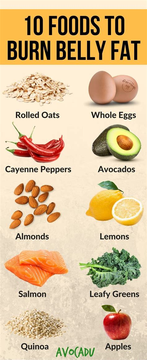 healthy fats to burn 25 best ideas about diet on diet foods