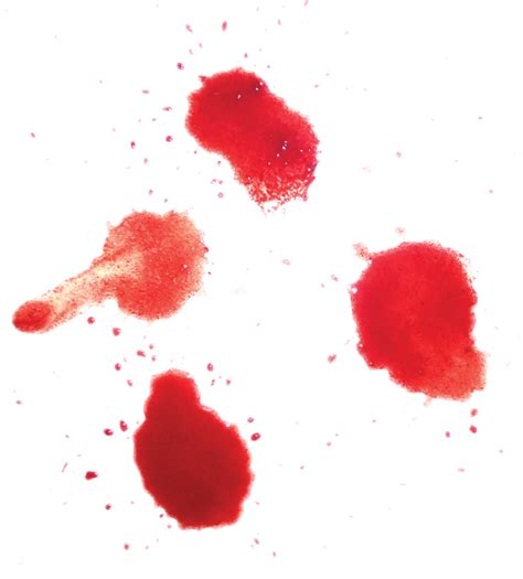 Blood Real In by The Gallery For Gt Realistic Blood Png
