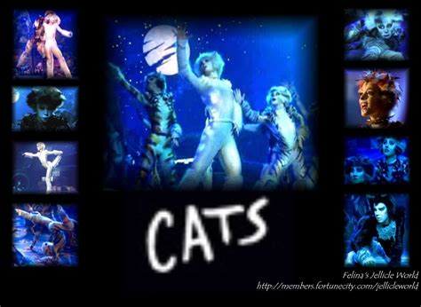 cats musical cats musical wall papers cats the musical photo 7261820