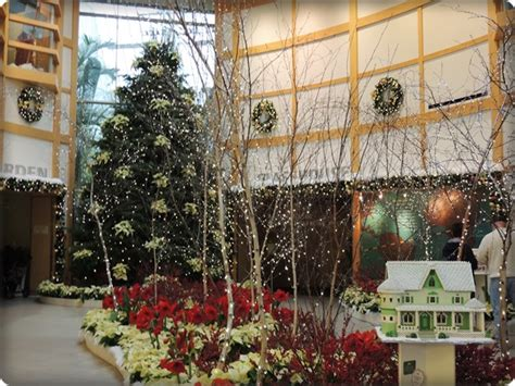 cleveland botanical garden glow review