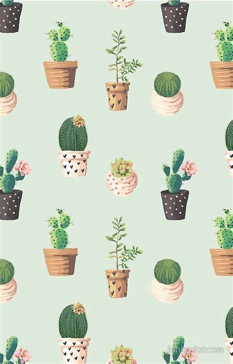 wallpaper for iphone cactus best 20 iphone 5 wallpaper ideas on pinterest