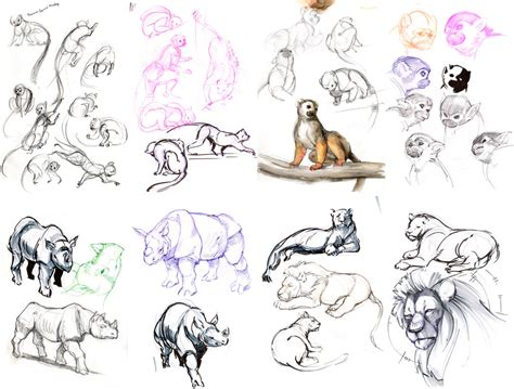 sketchbook of a zoo zoo sketches 10 17 12 by orangetavi on deviantart