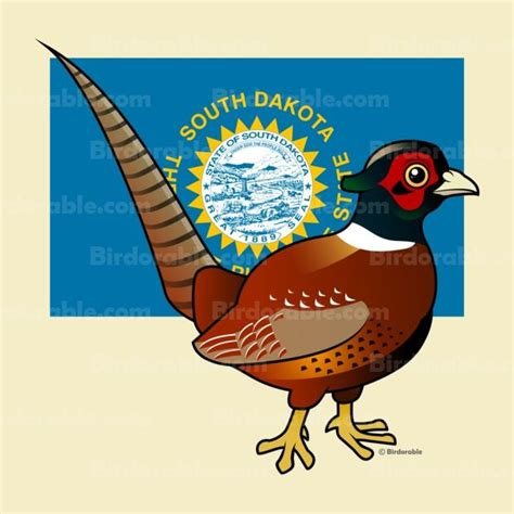 state bird of south dakota south dakota state bird products with cute pheasant