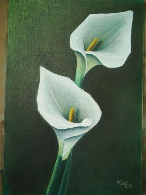 imagenes de flores alcatraces flores al pastel alcatraces blancos pictures