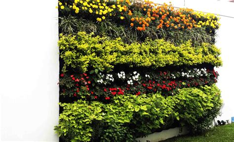 imagenes de jardines verticales caseros jardines verticales huichol 4 tipos de jardines
