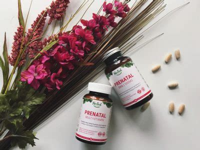 healthy fats in pregnancy healthy fats during pregnancy nested naturals