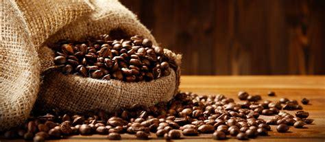 cafe si o no hist 243 ria e trajet 243 ria do caf 233 clubecaf 233