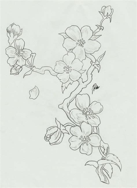 black and white cherry blossom tattoo designs black and white cherry blossom designs