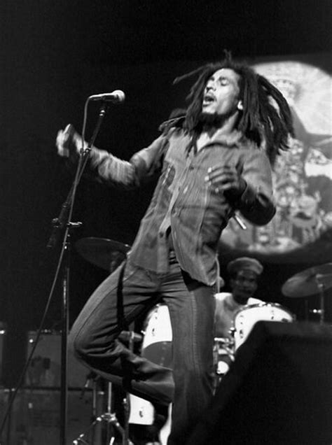 unauthorized biography of bob marley dread zeppelin discography torrent