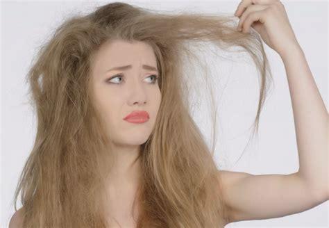 el pelo de la tratamientos para el cabello caseros y f 225 ciles