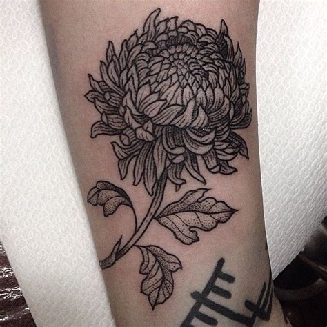 chrysanthemum tattoo best 25 crysanthemum ideas on