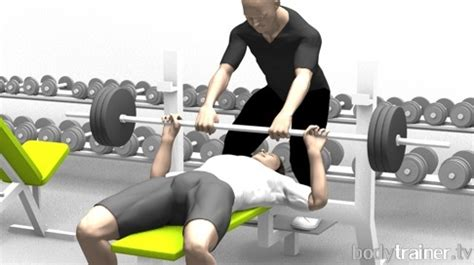 bench press definition can muscles get stronger without bigger