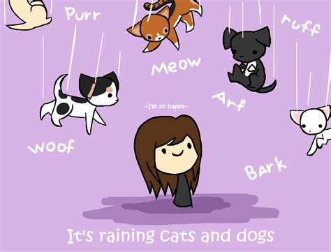 it s raining cats and dogs its raining cats and dogs by iamawsum on deviantart