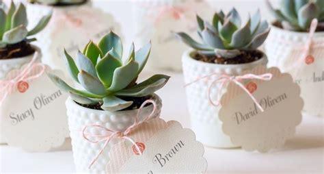 come curare le roselline in vaso piante come bomboniere ku82 pineglen